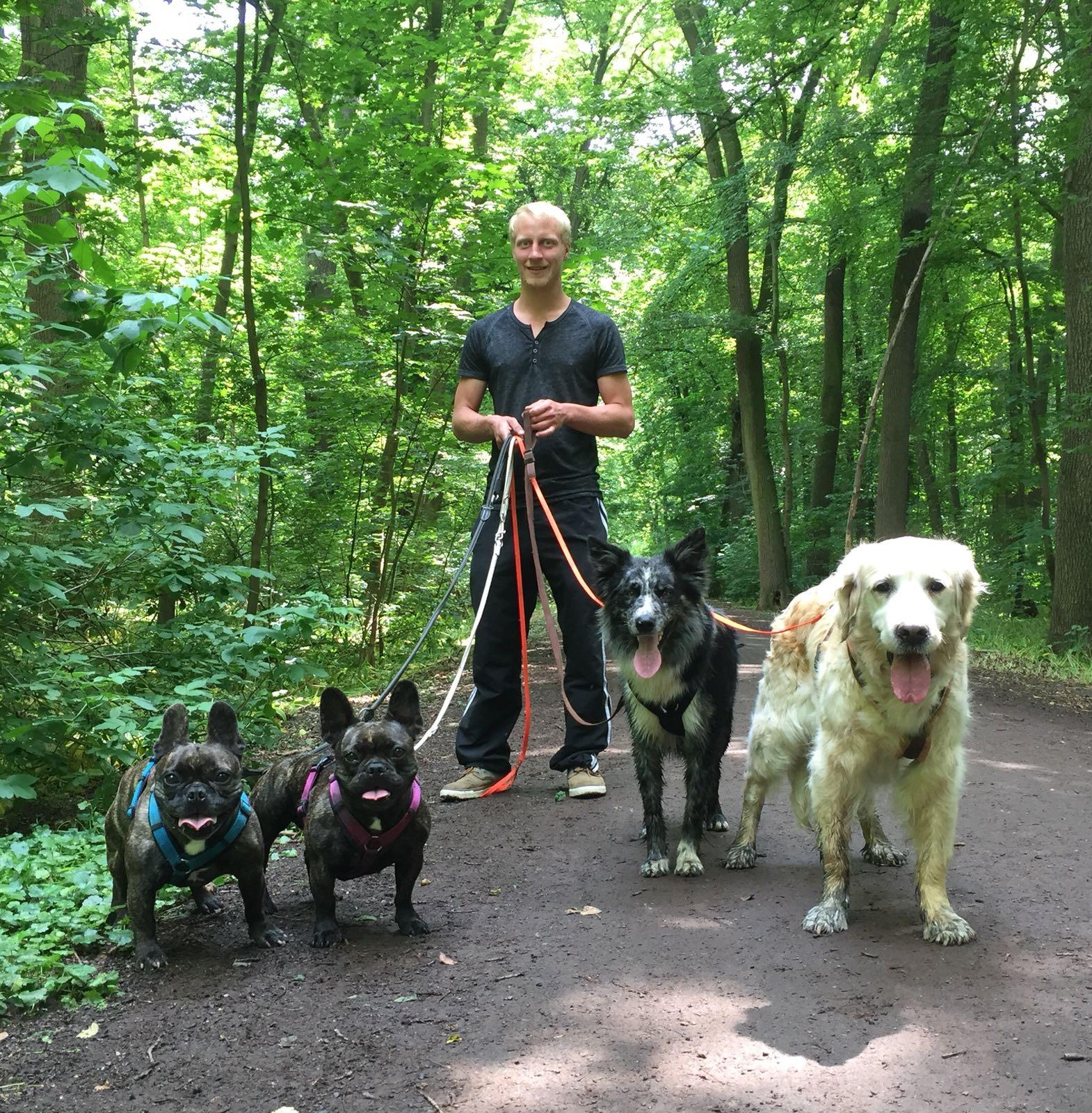 Hundetrainer Johannes Glintz